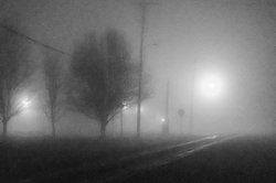 Fog crossing-2 resize.jpg