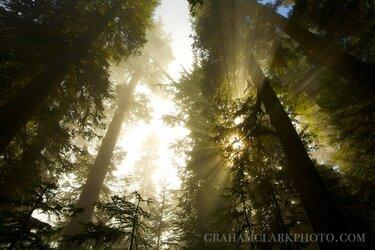 $grahamclarkphoto-9.jpg
