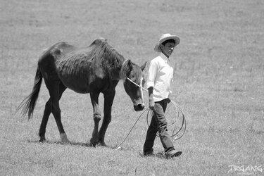 $kidHORSE.jpg