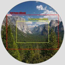$crop-circle.jpg