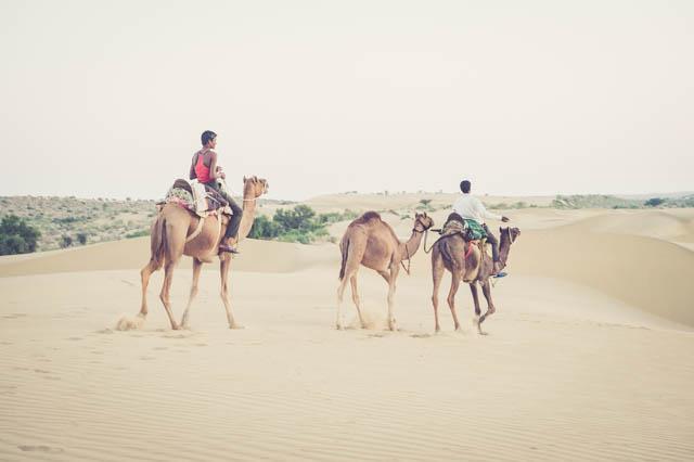 Camel Trekkers the Masters