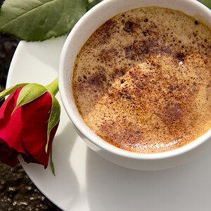 Coffee with Rose Closeup